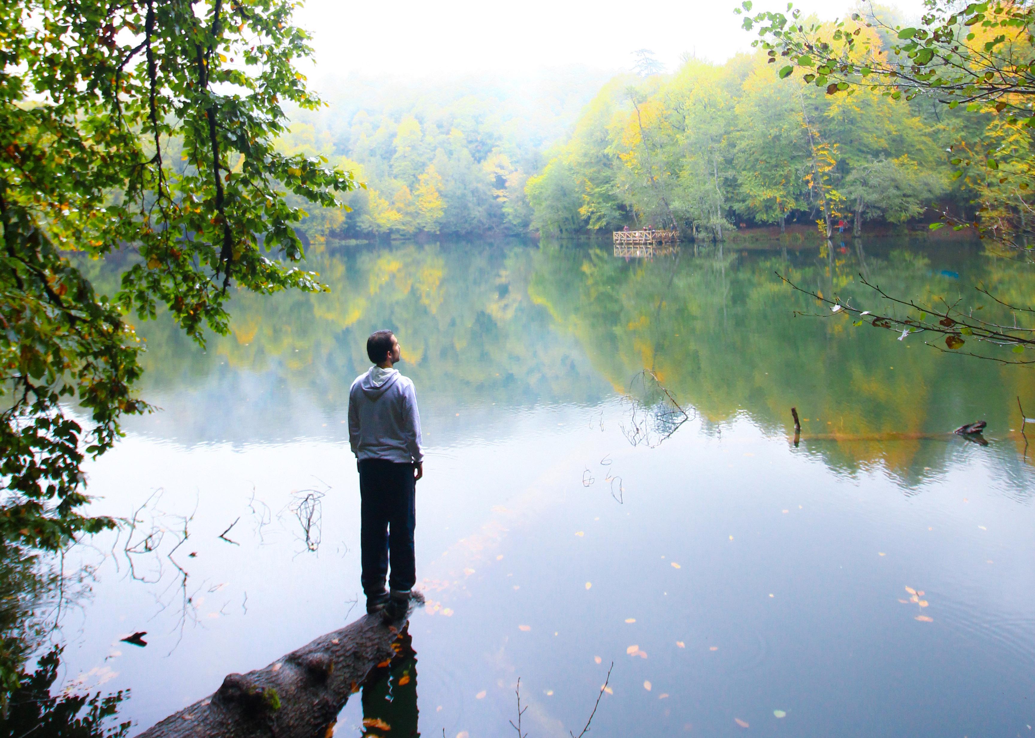 yedigöller, bolu, kamp, trekking, doğa, yürüyüş