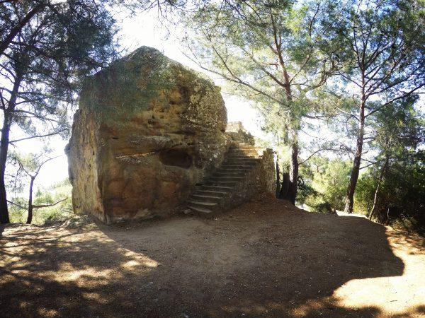 Zeus Altarı Ormandan