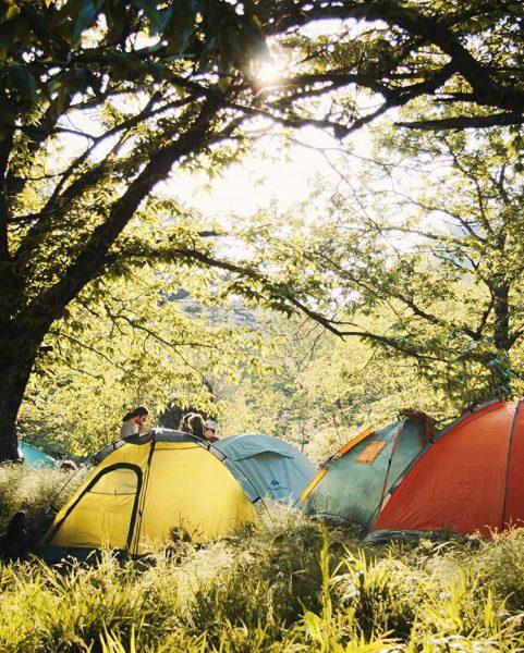 kaz dağları kamp
